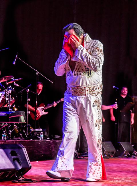Elvis-4